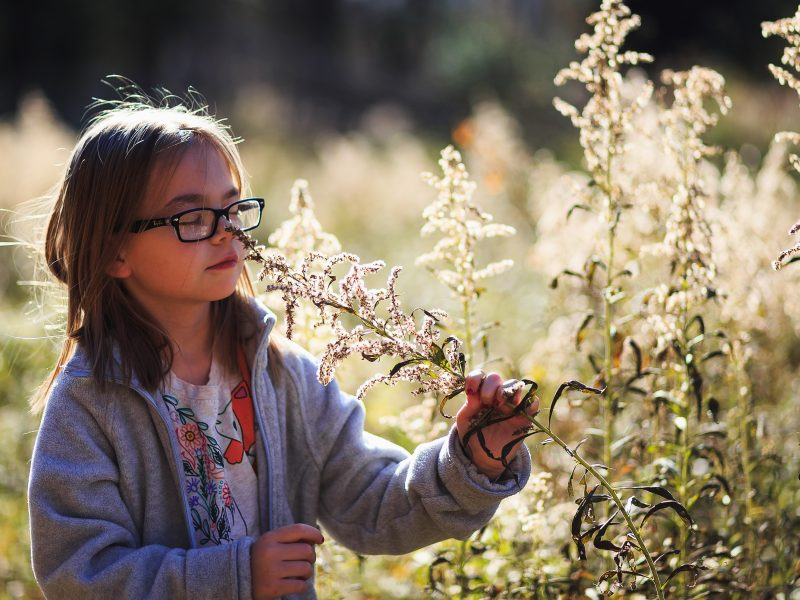Supporting Outdoor Learning Initiatives